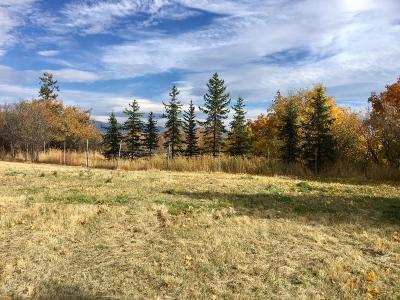 Kalispell Residential Lots & Land For Sale: 847 East Washington Street