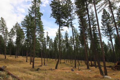 Flathead County Residential Lots & Land For Sale: 1104 Dancing Bear Trail