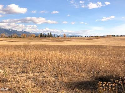 Kalispell Residential Lots & Land For Sale: 40 Cimarron Trail