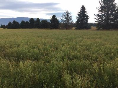 Whitefish MT Residential Lots & Land For Sale: $775,000