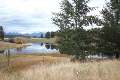 Flathead County Residential Lots & Land For Sale: 41 Bear Paw Loop