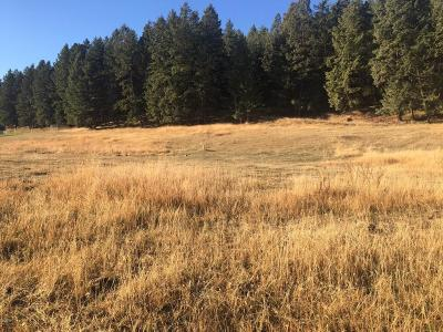 Flathead County Residential Lots & Land For Sale: Nhn White Basin Road