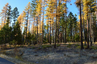 Whitefish Residential Lots & Land Under Contract Taking Back-Up : 235 Hidden Hills Lane
