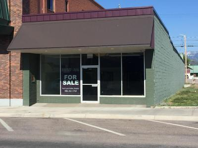 Lake County Commercial For Sale: 305 Main Street