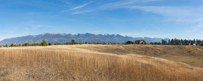 Kalispell Residential Lots & Land For Sale: 2451 Holt Stage Road