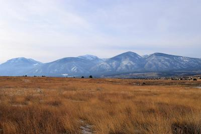 Ravalli County Residential Lots & Land For Sale: 1041 Molly Joanne Lane