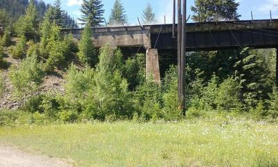 Residential Lots & Land Sold: 4 Rainy Creek Road