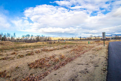 Ravalli County Residential Lots & Land For Sale: Lot 70 Cowboy Court
