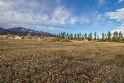 Ravalli County Residential Lots & Land For Sale: Lot 72 Cowboy Court