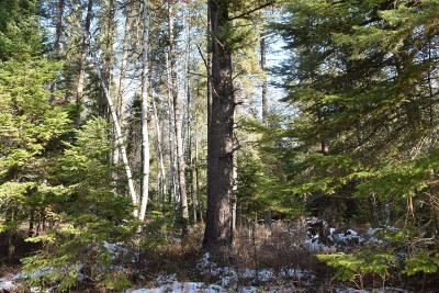 Whitefish Residential Lots & Land Under Contract Taking Back-Up : Nhn Rick O'shay Road