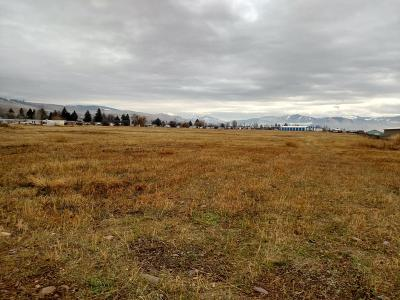 Residential Lots & Land For Sale: 6505 Highway 10 West