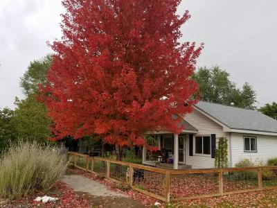 Missoula Single Family Home Under Contract Taking Back-Up : 1622 Defoe Street