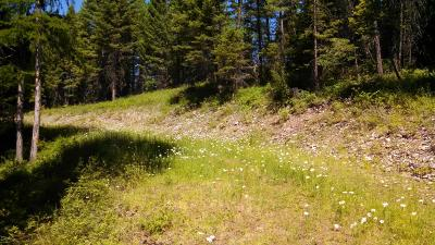 Kalispell Residential Lots & Land For Sale: 199 East Many Lakes Drive