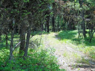 Lincoln County Residential Lots & Land For Sale: Pinkham Creek Road