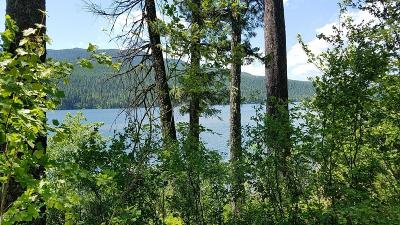 Bigfork Residential Lots & Land For Sale: Nhn Mt Hwy 83
