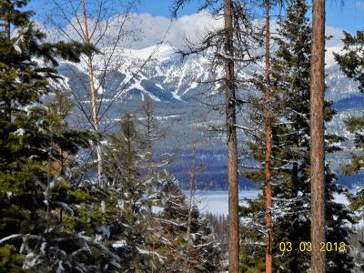 Whitefish Residential Lots & Land For Sale: 721 Grouse Ridge Court