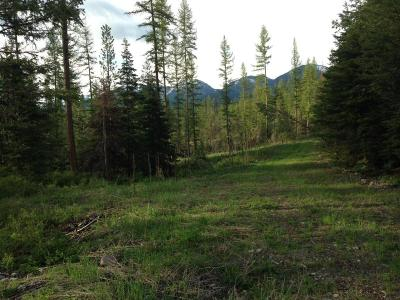 Kalispell Residential Lots & Land For Sale: 395 Kauffman Lane