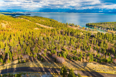 Flathead County Residential Lots & Land For Sale: 47 Big Rock Ridge