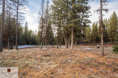 Flathead County Residential Lots & Land For Sale: 164 Hidden Prairie Road