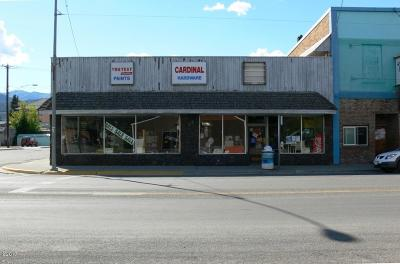 Lincoln County Commercial For Sale: 220 Mineral Avenue