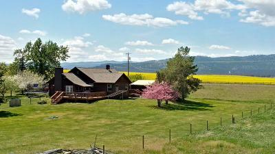 Flathead County Single Family Home For Sale: 391 Stillwater Road