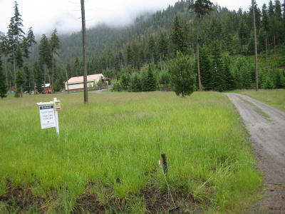 Superior Single Family Home For Sale: 698 Sunrise Creek Road