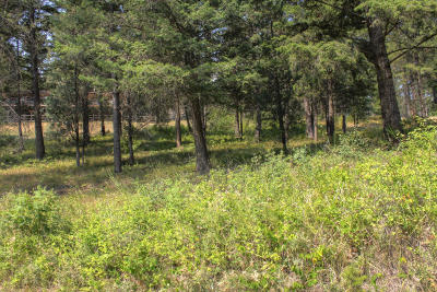 Lakeside Residential Lots & Land For Sale: 279 Lakeview Drive