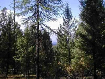 Seely Lake, Seeley Lake Residential Lots & Land For Sale: Nhn Grizzly Drive