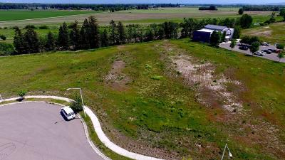Kalispell Residential Lots & Land For Sale: 110 School Station Court