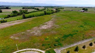 Kalispell Residential Lots & Land For Sale: 115 Old School Drive