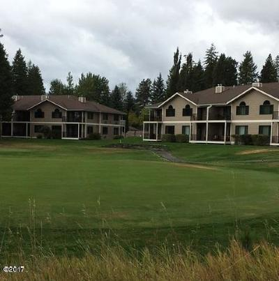 Flathead County Other For Sale: 107 Spyglass Hill Loop
