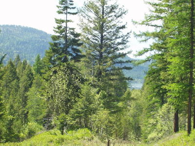 Whitefish Residential Lots & Land For Sale: Reservoir Road