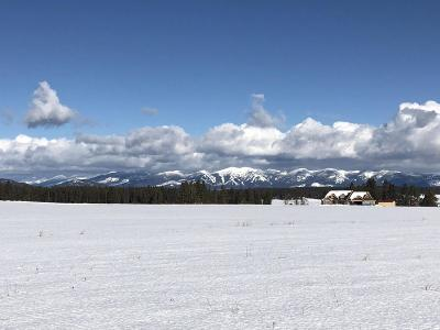 Kalispell Residential Lots & Land Under Contract Taking Back-Up : Nhn Fox Farm Lane