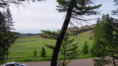 Kalispell Residential Lots & Land For Sale: 200 Walking Coyote Drive