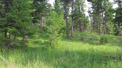 Kalispell Residential Lots & Land For Sale: 182 Walking Coyote Drive