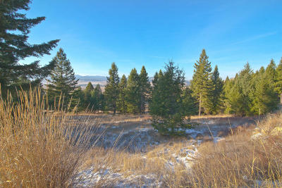 Kalispell Residential Lots & Land For Sale: 235 Walking Coyote Drive