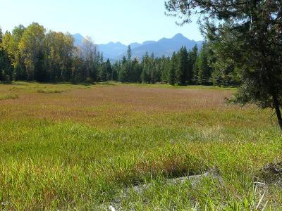Missoula County Residential Lots & Land For Sale: 162 Leistiko Lane
