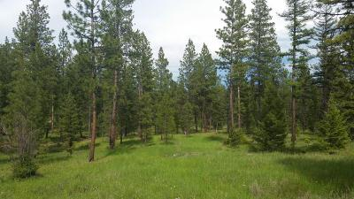Missoula County Residential Lots & Land For Sale: Nhn Wayback Road