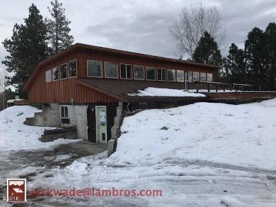 Stevensville Single Family Home For Sale: 3652 Silverthorn Drive