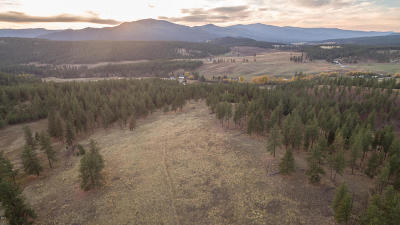 Missoula County Residential Lots & Land For Sale: Nhn Nook Lane