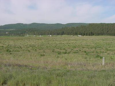 Kalispell Residential Lots & Land Under Contract Taking Back-Up : 216 Frontage Park