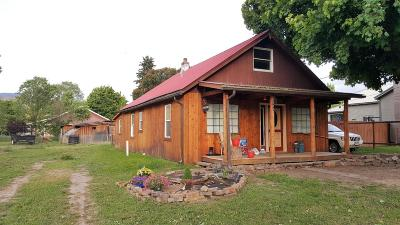 Plains Single Family Home For Sale: 506 3rd Street