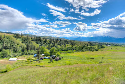 Ravalli County Single Family Home For Sale: 1623 Wild Turkey Road