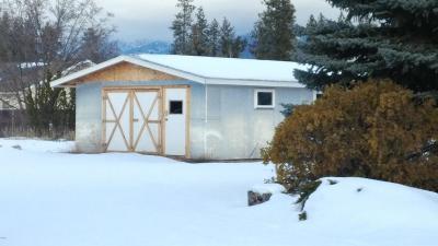 Lake County Single Family Home For Sale: 36248 Felsman Street