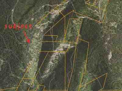 Sanders County Residential Lots & Land For Sale: Nhn Forest Service Road