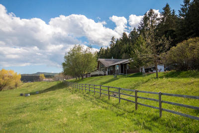 Flathead County Single Family Home For Sale: 395 White Basin Road