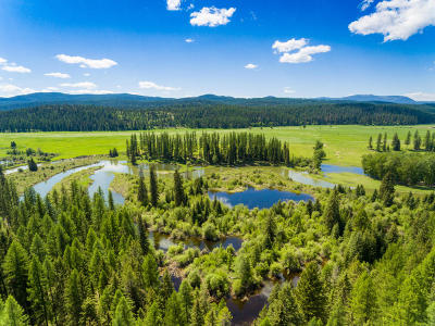 Whitefish Residential Lots & Land For Sale: Nhn Hill Meadows & 4685 Hwy 93 W Road
