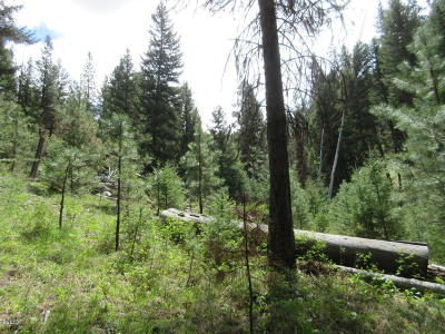 Darby Residential Lots & Land For Sale: 154 4th Of July Gulch Road