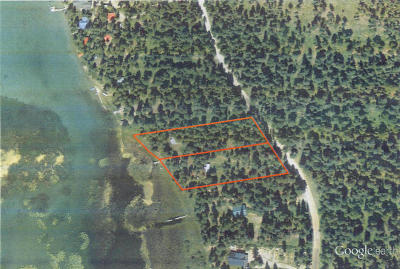 Flathead County Single Family Home For Sale: 4821 South Ashley Lake Road