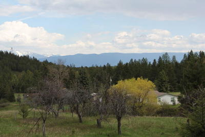 Flathead County Residential Lots & Land For Sale: 1131 Bierney Creek Road